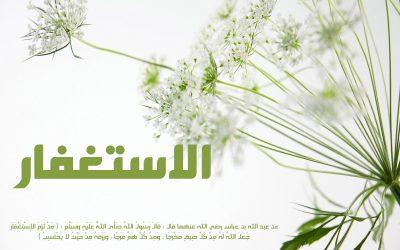 فضل الاستغفار || الشيخ خالد الشهاب